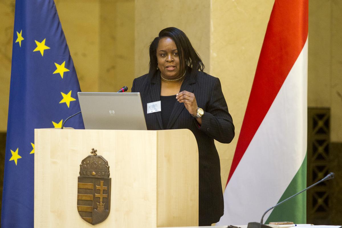 Hungarian-Migration-Colloquium-Nov-2017-Dr-Tanya-Herring-6